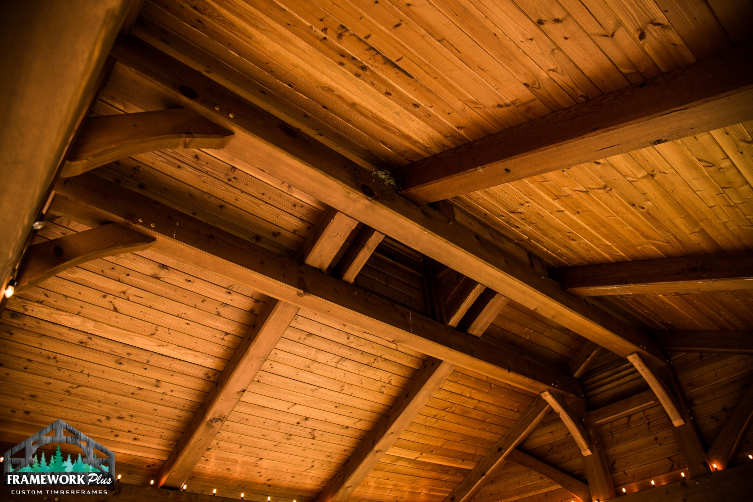 Boring, OR Pavilion Ceiling II